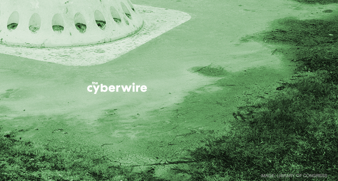 The CyberWire Daily Podcast 7.5.17