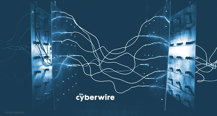 The CyberWire Daily Podcast 1.3.19
