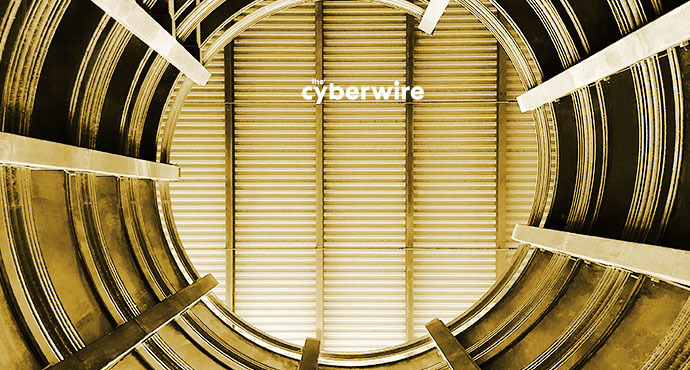 The CyberWire Daily Podcast 1.15.19