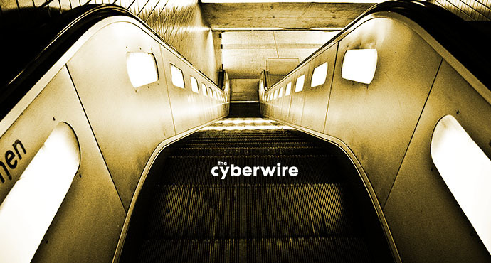 The CyberWire Daily Podcast 1.29.19