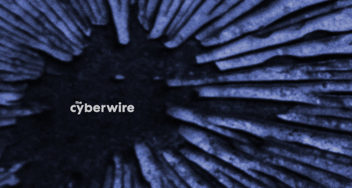 The CyberWire Daily Podcast 7.25.19
